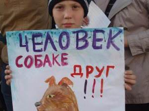 """Новопавловск """"Виртуальный городок"""" #0"""